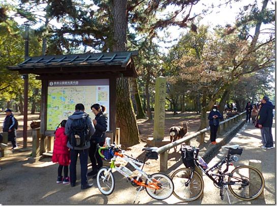 ミニベロで奈良公園到着